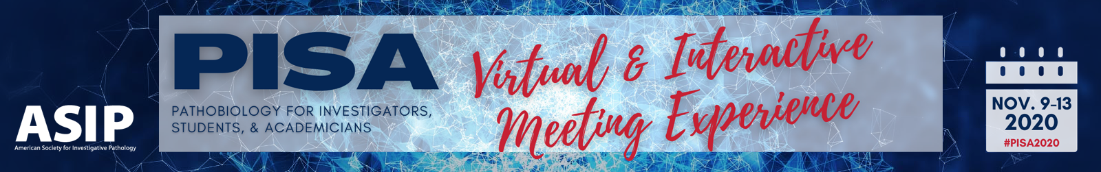 PISA 2020 - Virtual and Interactive Meeting Experience